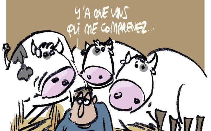 agribashing-le-blues-des-agriculteurs-exceacute-deacute-s-drsquo-ecirc-tre-mis-au-banc-des-accuseacute-s.jpg