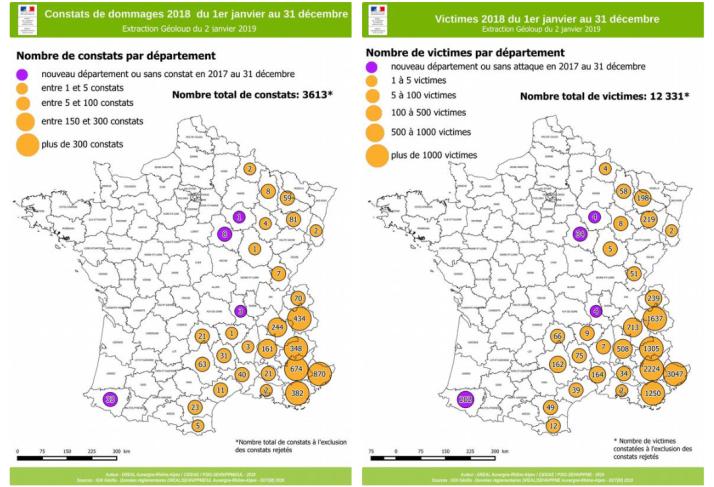 Screenshot_2019-04-12-infoloup25-bilan2018-pdf